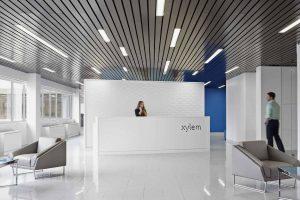 Xylem reception area